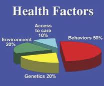 Healthy Habits and Factors